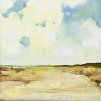 B3907D - Burggraaf, Stella - Dutch Coast