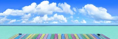 R1333D - Reed, Jack - Rainbow Deck