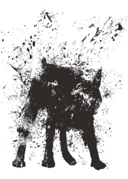 S1887D - Solti, Balazs - Wet Dog