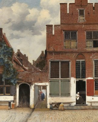 V764D - Vermeer, Johannes - View of Houses in Delft, Known as The Little Street, c. 1658