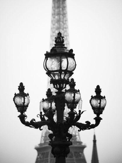 O403D - Okula, Carina - City of Light and Love