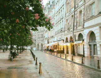 O410D - Okula, Carina - Paris in Chesnut Blossom Pink