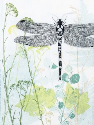 R1362D - Rice, Trudy - Dragonfly And The Healing Plant