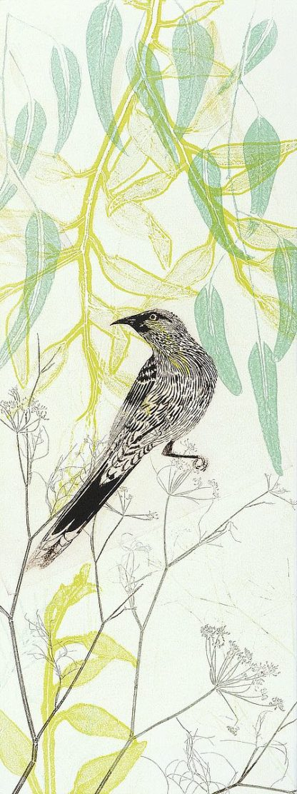 R1364D - Rice, Trudy - Eager To Fly Wattlebird