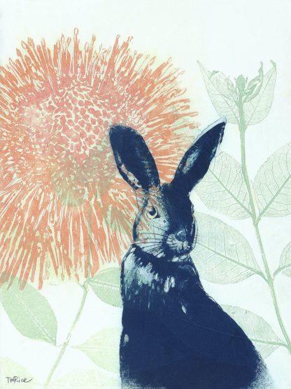 R1368D - Rice, Trudy - Pink Waratah and Blue Rabbit