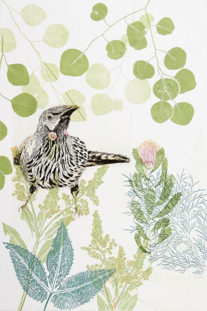 R1372D - Rice, Trudy - Wattlebird and Pincushion Protea