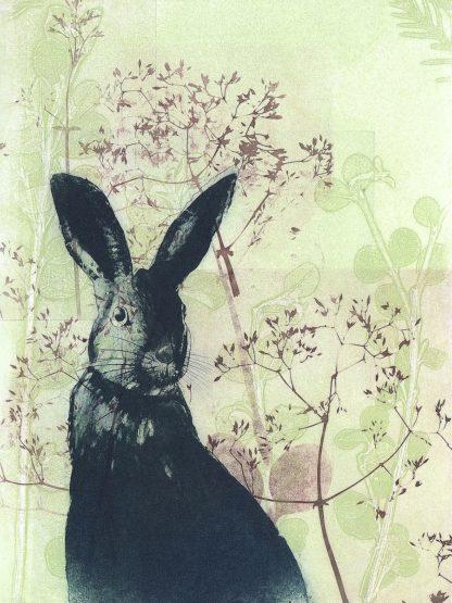 R1377D - Rice, Trudy - Wild Rabbit