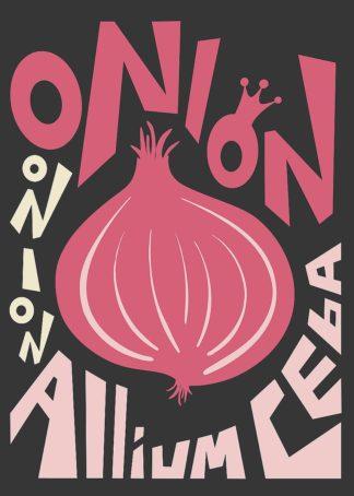 A658D - Ayse - Kitchen Onion