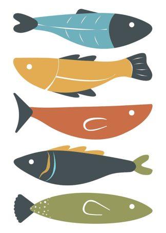 A660D - Ayse - Playful Fish
