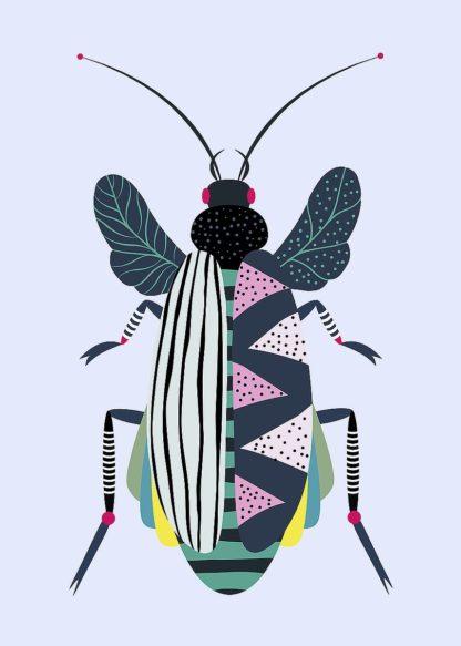 A669D - Ayse - Beetle