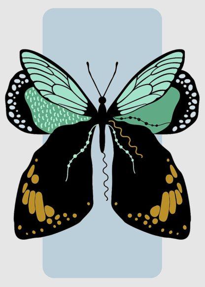 A670D - Ayse - Butterfly