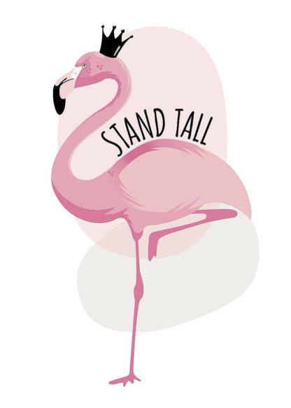 A672D - Ayse - Flamingo