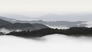 B4049D - Bell, Nicholas - Rolling Fog, Smoky Mountains No. 2