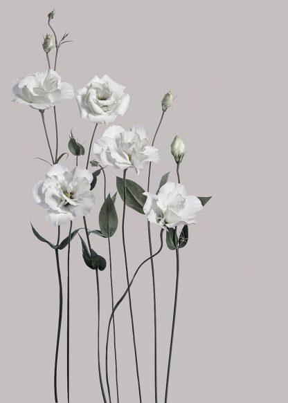 MF969-1746 - Design Fabrikken - Flower 1