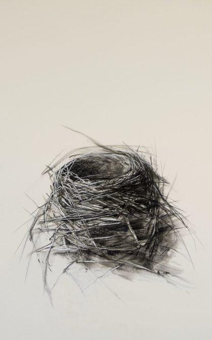 E225D - Ekstrand, Kris - Fledged Nest