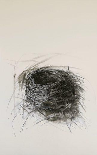 E226D - Ekstrand, Kris - Habitat Nest