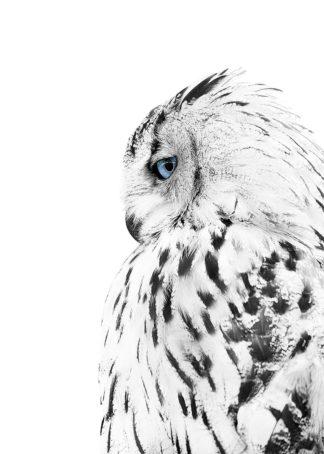 MF969-1923 - Design Fabrikken - White Owl