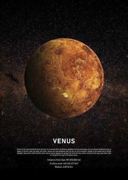 MF969-1929 - Design Fabrikken - Venus