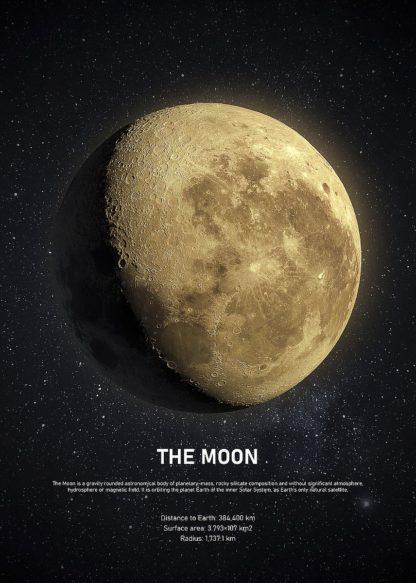 MF969-1932 - Design Fabrikken - The Moon