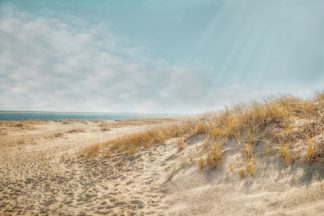 R1393D - Ryan, Brooke T. - Chatham Lighthouse Beach