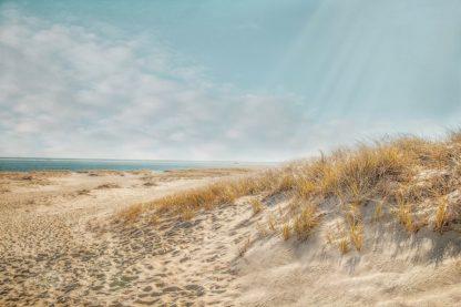 R1393D - Ryan, Brooke T. - Chatham Lighthouse Beach