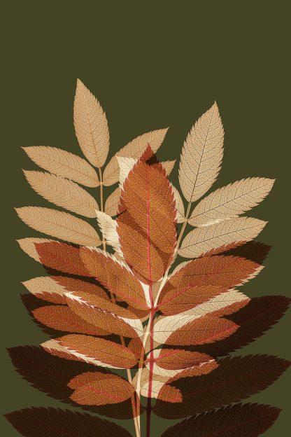 W1153D - Winstanley, Ian - Fall Leaves 4