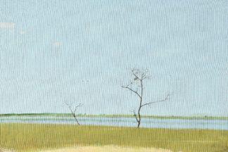 N474D - Nekraha, Igor - On The Lake, September