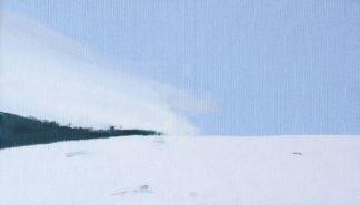 N475D - Nekraha, Igor - Snowy Field