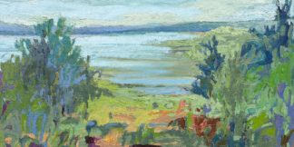 S1909D - Schmidt, Jane - On A Clear Day