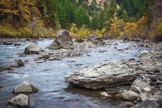 B4129D - Broom, Michael - Rocky River