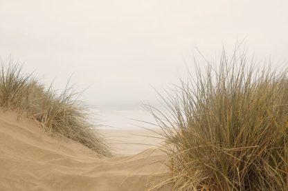 W1164D - Winstanley, Ian - White Oceans 38