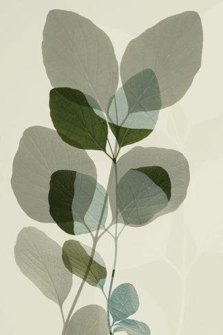 W1171D - Winstanley, Ian - Green Leaves 10
