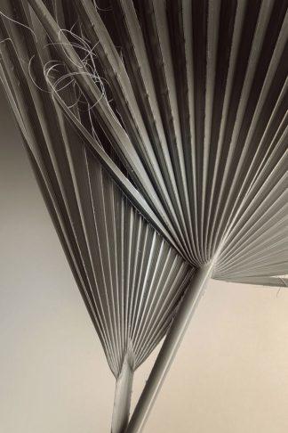 W1176D - Winstanley, Ian - Fan Detail 8