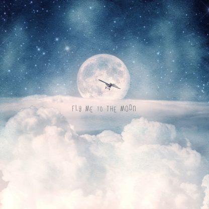 F846D - Flores, Paula Belle - Moonrise Over the Clouds