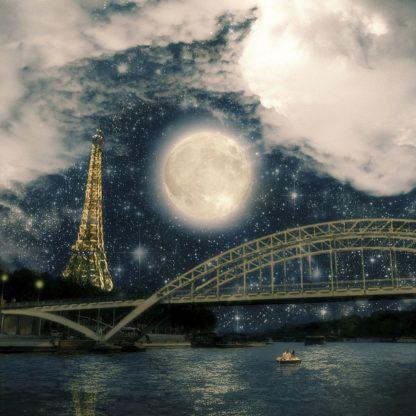 F851D - Flores, Paula Belle - One Starry Night in Paris