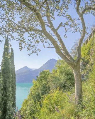 R1423D - Ryan, Brooke T. - Lago di Como View No. 2
