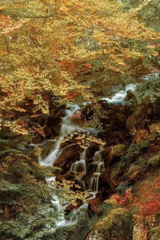 V769D - Van de Goor, Lars - Hidden Waterfall