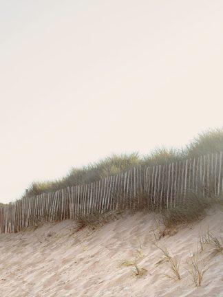 W1193D - Winstanley, Ian - White Oceans 55