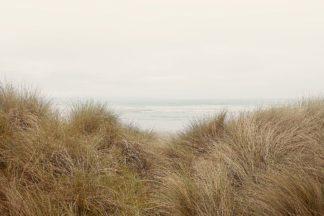 W1195D - Winstanley, Ian - White Oceans 48