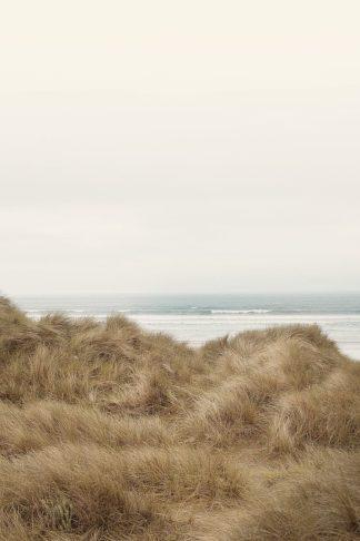 W1196D - Winstanley, Ian - White Oceans 47