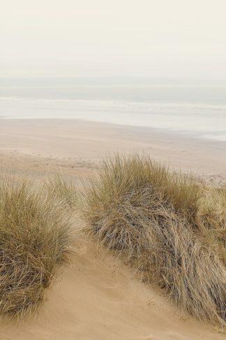 W1197D - Winstanley, Ian - White Oceans 31