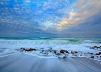 Z1597D - Zephyr, Patrick - Ocean Surf