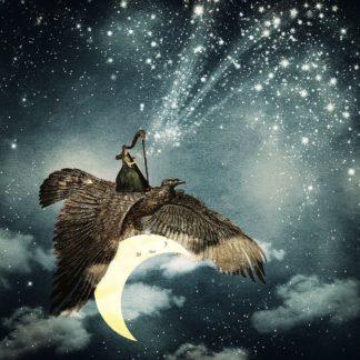 F855D - Flores, Paula Belle - The Night Goddess