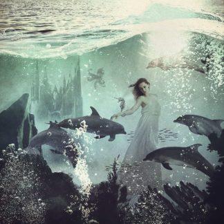 F856D - Flores, Paula Belle - The Sea Unicorn Lady
