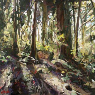 H1836D - Hastie, Joanne - Cedar Shadows