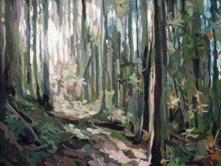 H1838D - Hastie, Joanne - Forest Light