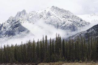 H1841D - Henriksen, Jennifer - Adventure Mountain