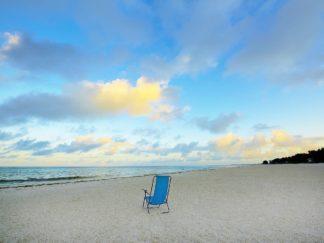 R1446D - Reed, Jack - Chair On Beach