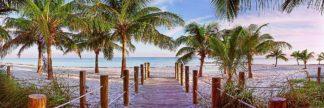 R1457D - Reed, Jack - Swathers Beach