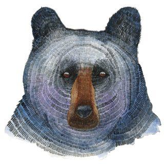 S1941D - Saylor, Jeannine - Black Bear